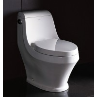 Ariel Platinum TB133 One Piece Dual Flush Ultra Low Flush Eco Friendly White Toilet