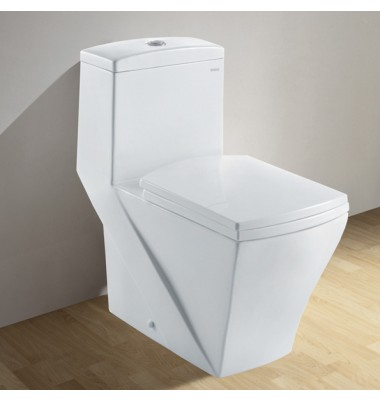Ariel Platinum One Piece Dual Flush Ultra Low Flush Eco Friendly White Toilet