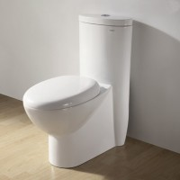 Ariel CO1008 One Piece Dual Flush Ultra Low Flush Eco Friendly White Toilet