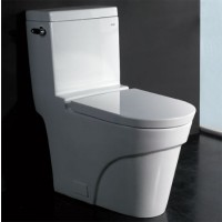 Ariel TB326 One Piece Modern Ultra Low Single Flush Eco Friendly Toilet