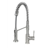 Ariel Coil Style Solid Stainless Steel Lead Free Single Handle Pull Out Sprayer Kitchen Faucet