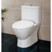 Ariel Platinum TB346 One Piece Dual Flush Ultra Low Flush Eco Friendly White Toilet