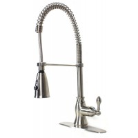 European Style Lead Free Coil Spring Duel Mode Brushed Nickel Kitchen Faucet