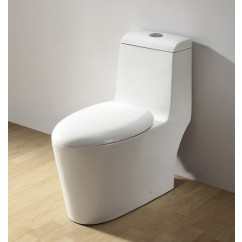 Ariel CO1042 One Piece Dual Flush Ultra Low Flush Eco Friendly White Toilet