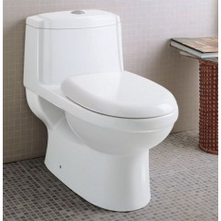 Ariel TB222 One Piece Dual Flush Ultra Low Flush Eco Friendly White Toilet