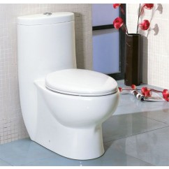 Ariel  TB309 One Piece Dual Flush Ultra Low Flush Eco Friendly White Toilet