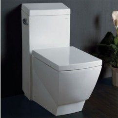 Ariel TB336 One Piece High Efficiency Single Flush EcoFriendly Toilet